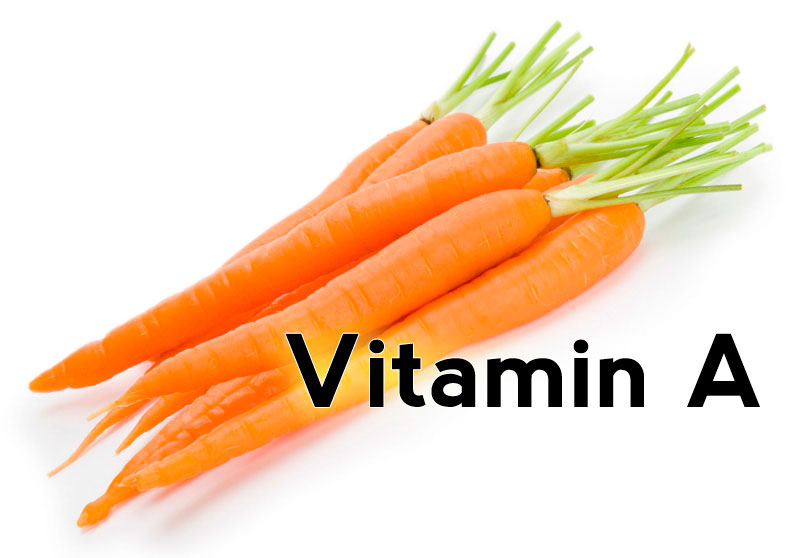 Vitamin A in Bone Metabolism
